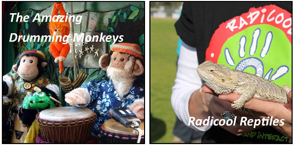 Drumming Monkeys